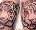 Tatuaje de Rydyk