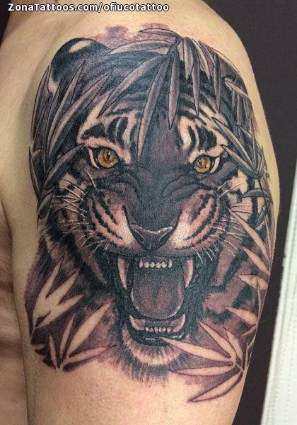 Tattoo Of Tigers Animals Shoulder