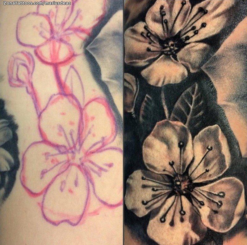 Tatuaje De Flores Cerezos