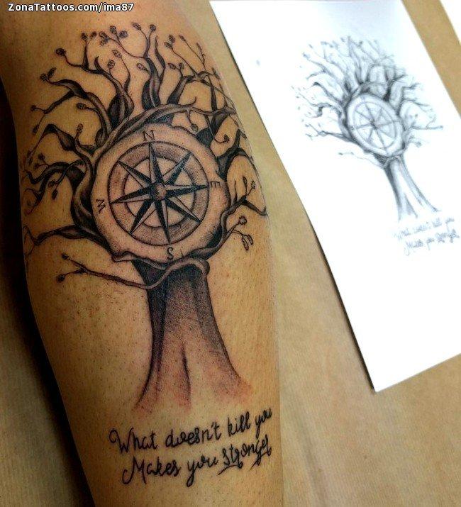 Tatuaje De árboles Rosa De Los Vientos Frases