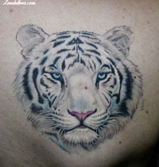 Tatuaje De Tigres Animales