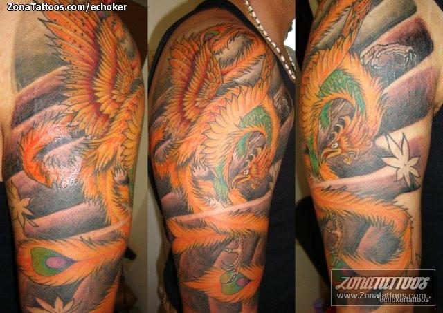 Tatuaje De Ave Fénix Brazo