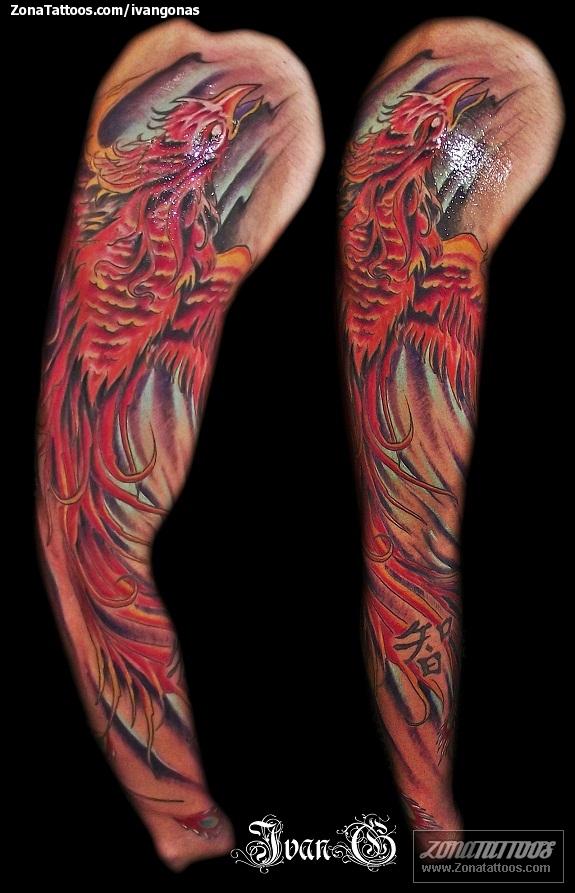 Tatuaje de fantas a ave f nix mangas - Photo de phenix ...