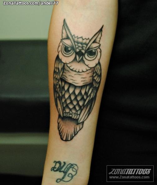 Tattoo Of Owls Old School Birds