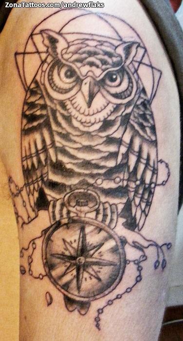 Tattoo Of Owls Compasses Birds