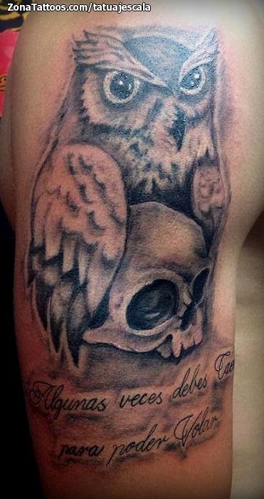 Tatuaje De Búhos Calaveras Aves