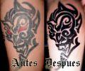 Tatuaje de thundersteel