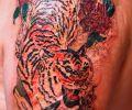 Tatuaje de Lely_tatoo