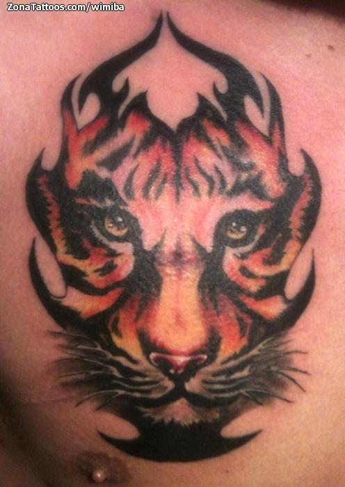 Tatuaje De Tribales Tigres Pecho