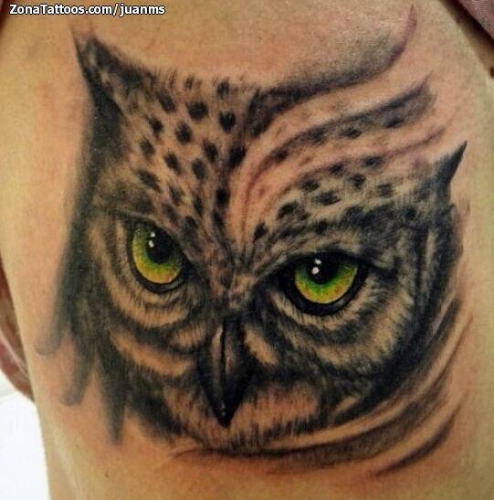 Tatuajes Y Disenos De Buhos
