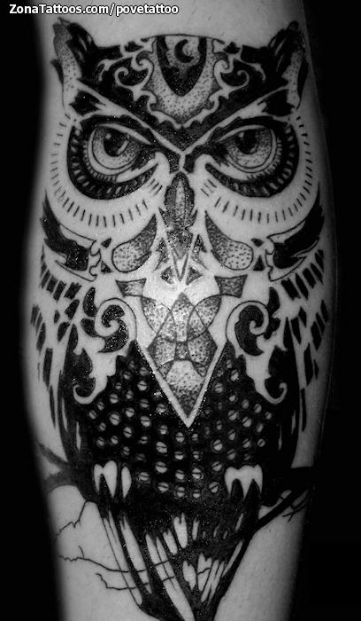 Tatuaje De Búhos Aves Animales