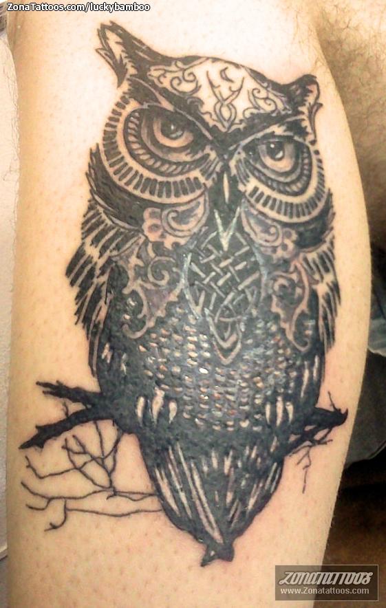 Tatuajes De Animales Para Hombres Tatuaje Para Hombres En La