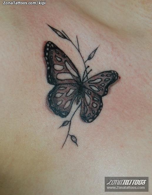 Tatuajes de Nombres en la Espalda . Fotos, Imágenes