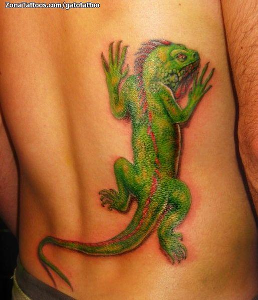 Tatuajes y diseos Iguanas