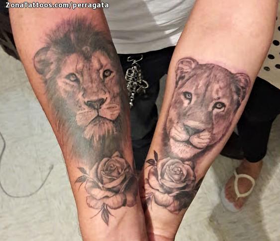 Tatuaje De Leones Animales Parejas