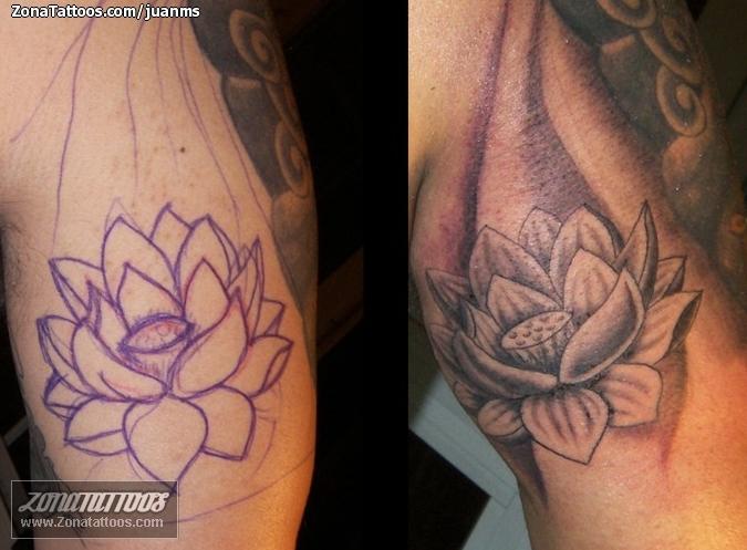 Flores Loto Tattoos