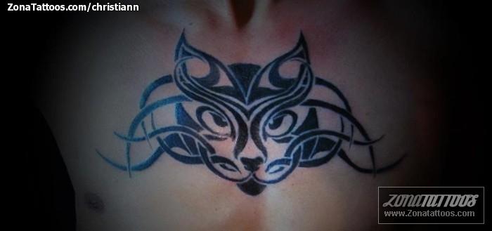 Tatuaje de christiann - Gatos Pecho Tribales