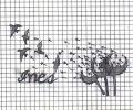 Plantilla/Diseño de McCurly
