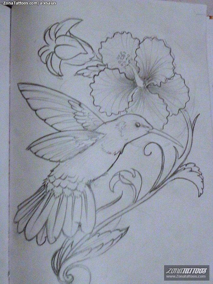 Colibri Tattoos - Ajilbab.Com Portal