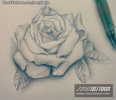 Diseño De Flores Rosas