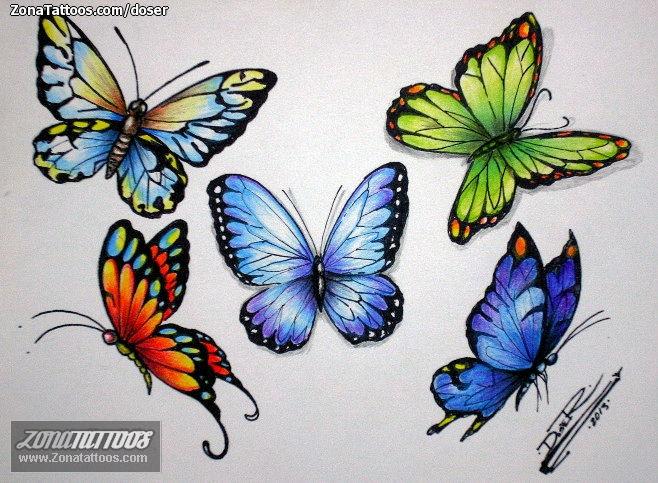 Diseño De Mariposas Insectos