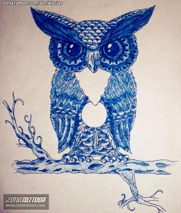Diseño De Búhos Animales Aves