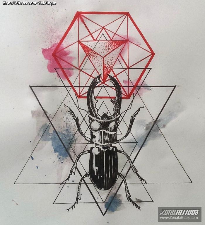 Foto Dise&241o Escarabajos Geom&233tricos Insectos