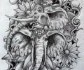 Plantilla/Diseño de Rame