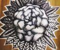 Plantilla/Diseño de nicoolh