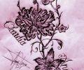 Plantilla/Diseño de tonitatu