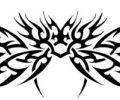 Plantilla/Diseño de sandoval247